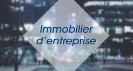 IMMOBILIER D'ENTREPRISE : Revue de presse du 19/02/2015